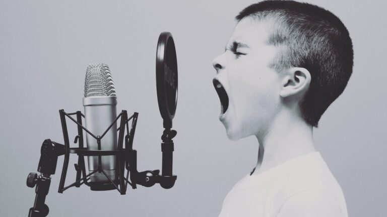 【有料記事】ストリーミング配信で大きい音を出したい人向け記事